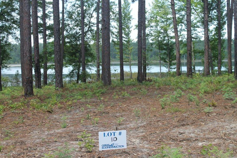 Clearwater Pines Residential Development at Lake Seminole, GA
