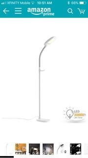 Aglaia LED Floor Lamp NEW IN BOX