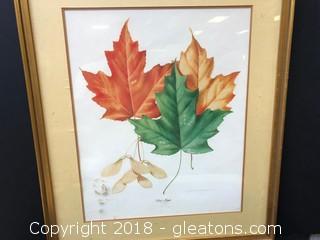 """""""Red Maple"""" Original Print"""