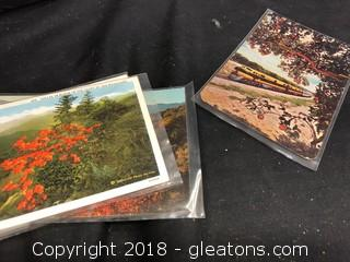Four (4) Vintage Postcards In Protective Sleeves