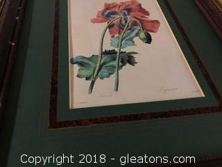Flower Framed Print By: P.J Redoute