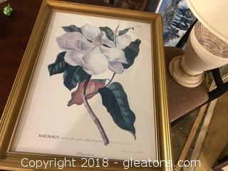 Magnolia - 33 Gilded Frame