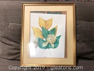 'Tulip Tree' Original Print