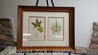 Botanical Engraving Custom Framed