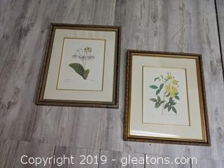 Lot Of 2 Framed Botanical Prints Matted